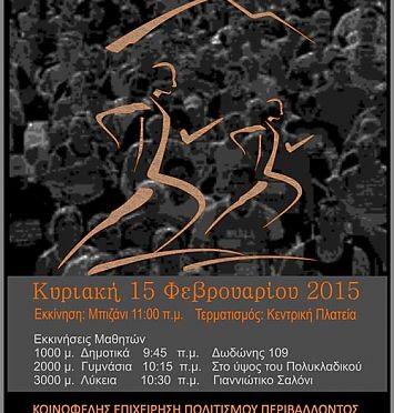 2015_02_15_mpizanios